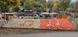 Die weltgrößte Kürbisausstellung im Blühenden Barock